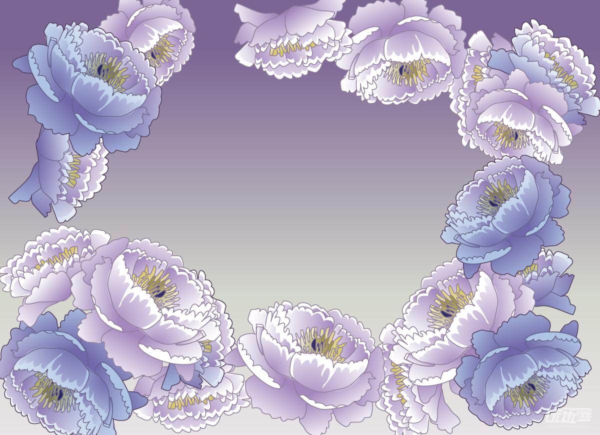 莲花 手绘 矢量图展示