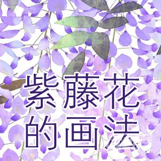 樱花教程 紫藤花画法 这个作者花画风想必大伙已经