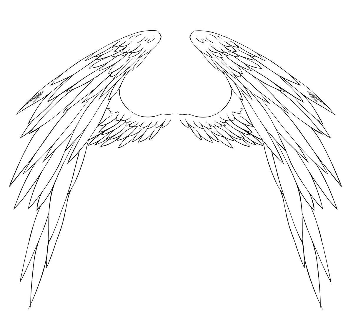 小花仙翅膀的画法分享_小花仙翅膀的画法图片下载