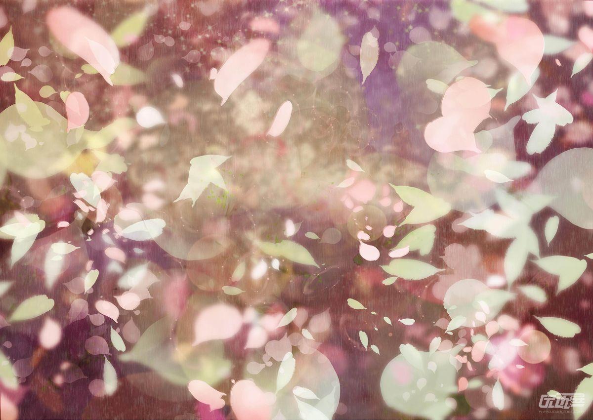 散落樱花背景素材